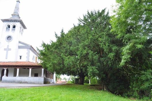 SAN CUCACO (Llanera)