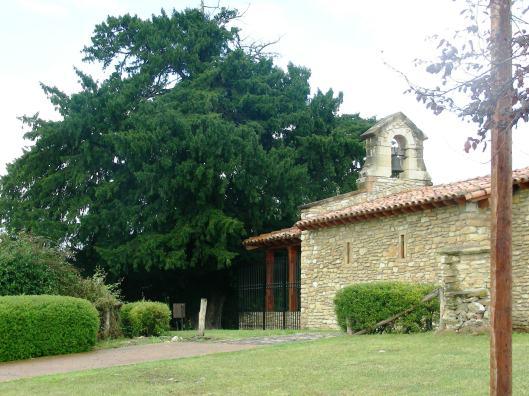 Santa Ana de Mexide (Oviedo)