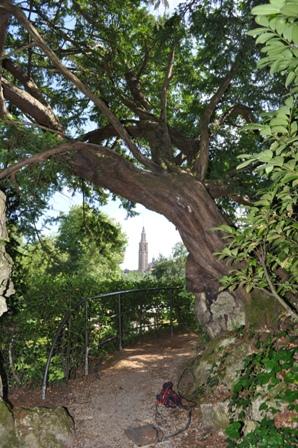 Jard n bot nico de gij n tejos de asturias for El jardin botanico gijon