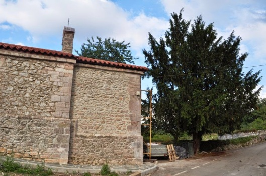 Sardín (Ribera de Arriba)